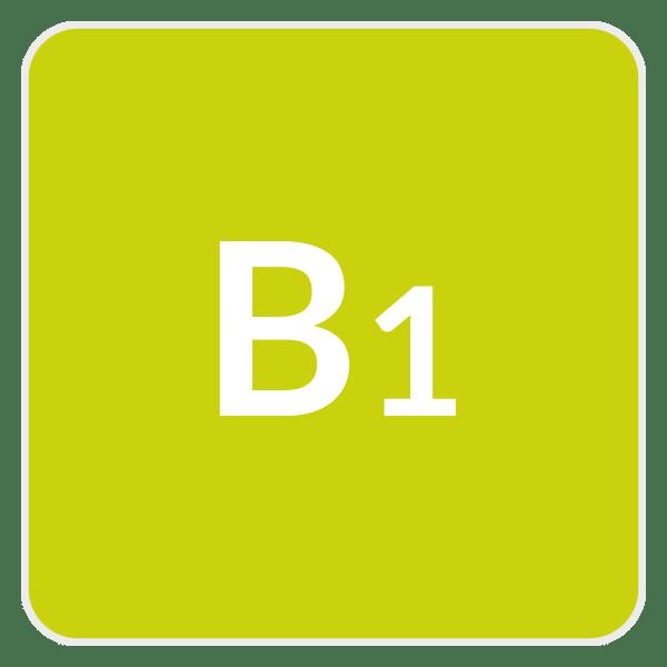 learn spanish online - Boton Nivel B1